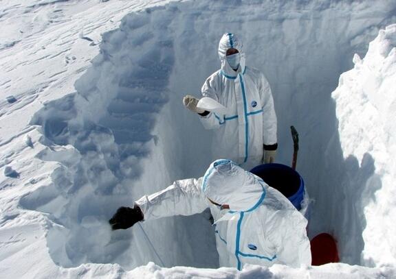 Вчені виявили в Антарктиді понад тону залишків динозаврів Поштівка