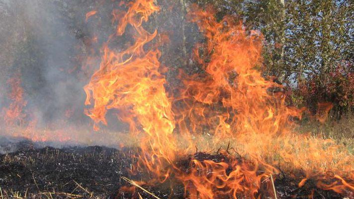 Українців попередили про надзвичайну пожежну небезпеку Поштівка