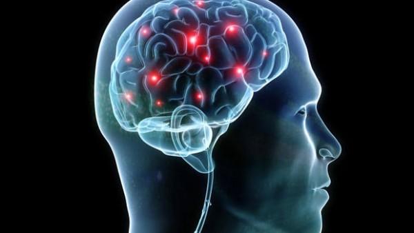 Фахівці знайшли у людському мозку квантові тунелі Поштівка