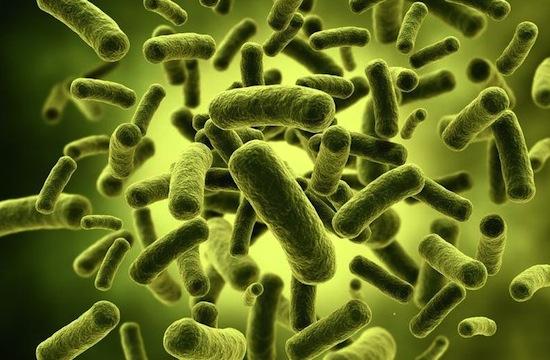 """В Йєллоустоні виявили """"інопланетні"""" мікроби Поштівка"""