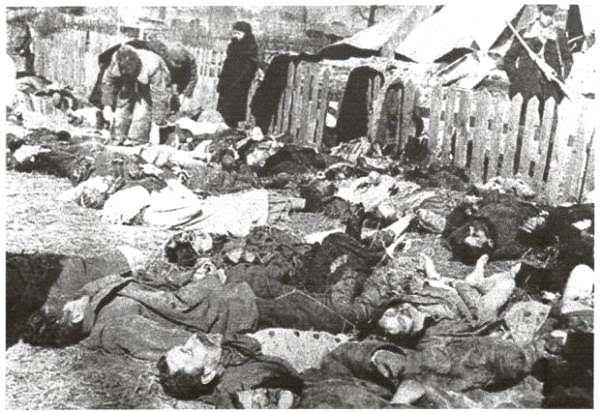 Сейм Польщі визнав Волинську трагедію геноцидом Поштівка image 2