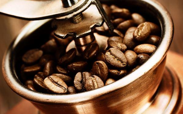 Кава може зникнути до 2080 року Поштівка