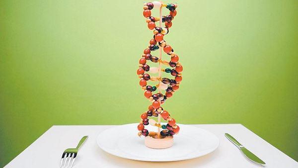 Генетики з США знайшли ген ожиріння Поштівка