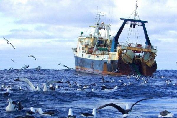 Рибопромисловий флот можна оновити завдяки українським суднобудівникам та лізингу Поштівка