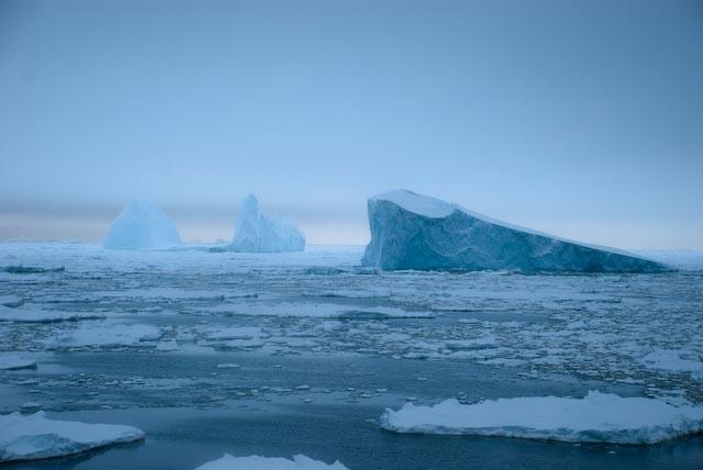 В Антарктиці створять найбільшу морську заповідну зону Поштівка