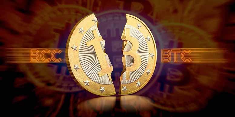 Криптовалюта нова automated binary options trading software reviews