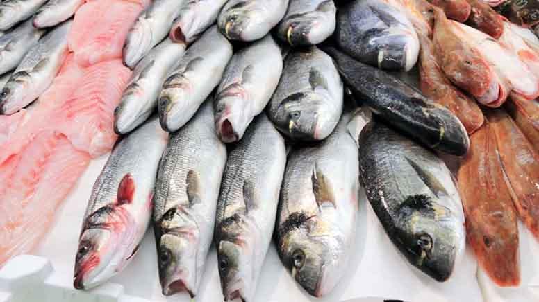 продаж риби