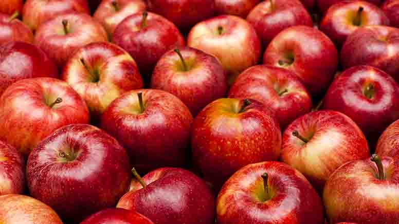 Pile of red Royal Gala apples