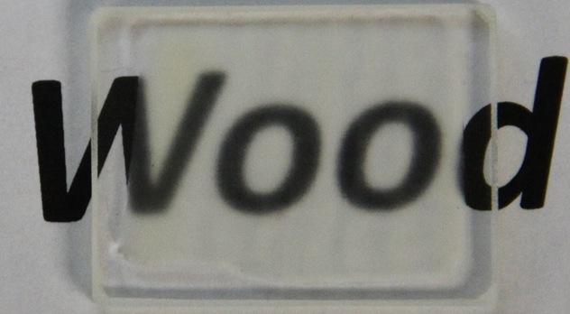 Американські вчені розробили прозору деревину Поштівка image 2