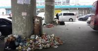 Як в Україні перемогти сміттєву стихію