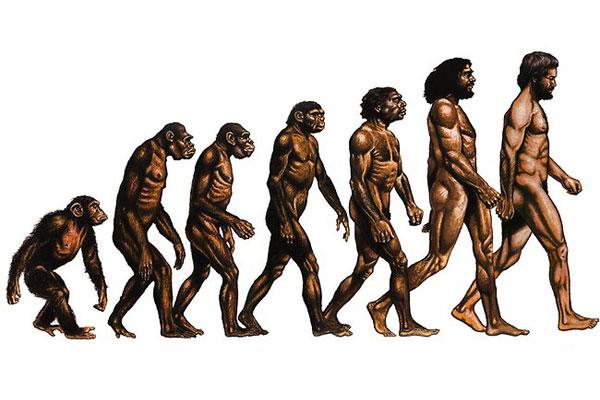 Дослідження виявили, що у розумних людей менше шансів «пережити» еволюцію Поштівка