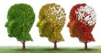 Хворобу Альцгеймера запропонували лікувати спалахом смартфону Поштівка