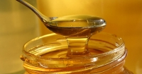 Майже 70 тисяч тонн меду експортувала Україна у 2017 році і потрапила у трійку експортерів світу