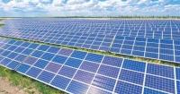 Трифанівська сонячна електростанція
