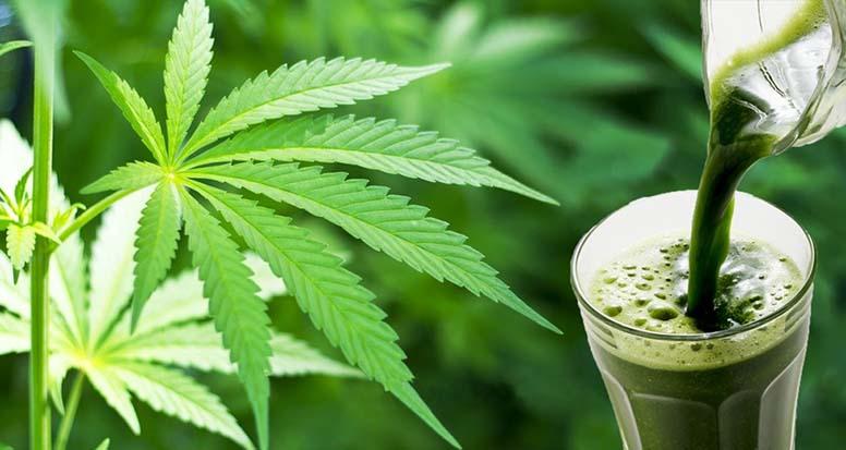 cannabis-for-health